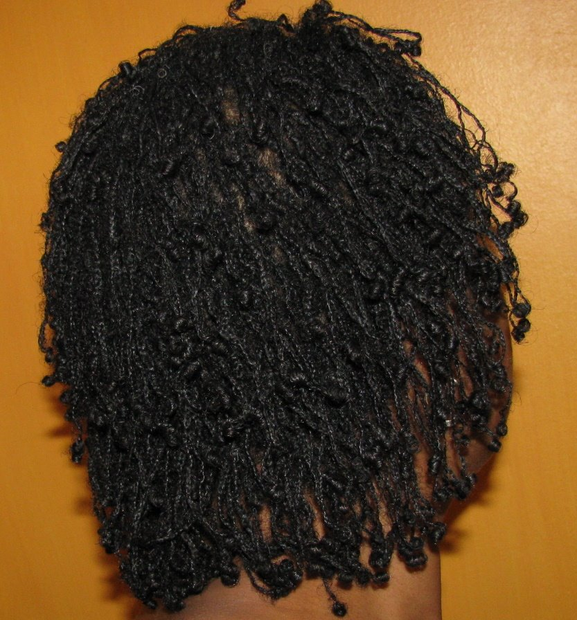 Pics Of Braidlocs In The Beginning Ceraisis